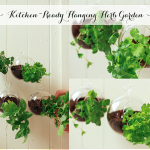 Kitchen-Ready Hanging Herb Garden