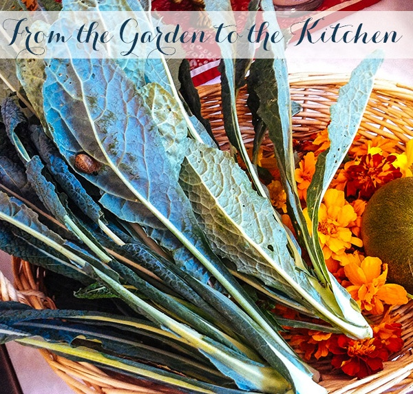 From the Garden to the Kitchen