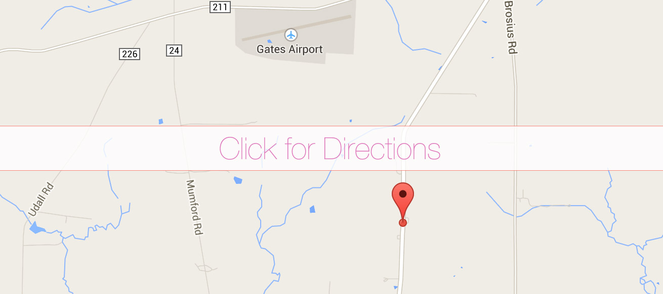 google-map-directions