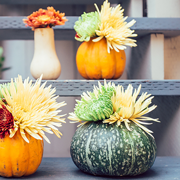 Fall Harvest Squash Vases